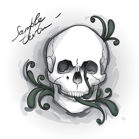 Skull Ornament  Hand drawn Vector