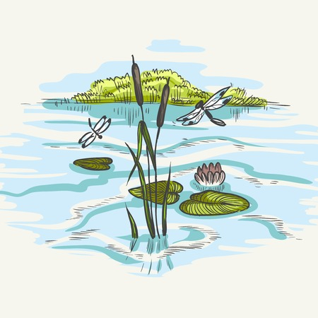 Natural Background Of Green Reeds Vectores