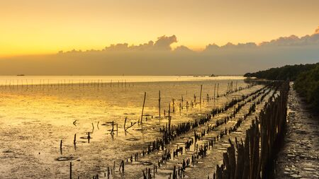 samutprakarn: Evening Time from the sea in Samutprakarn Thailand, Warming Landscape from the Ocean