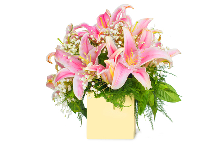 Pink lily in a gift box on a white background