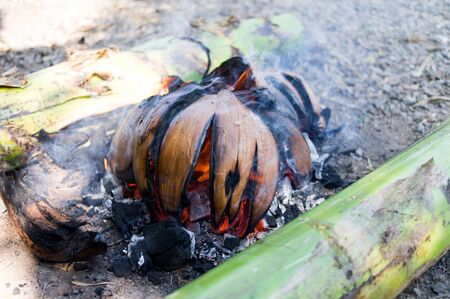 Burning coconut husks mosquitoes