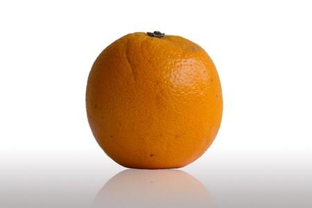 Orange on White Background photo