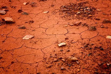 Detail of the cracked soil photo