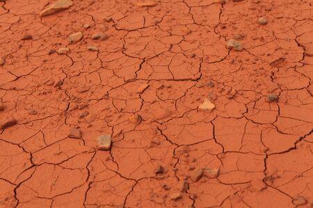 aridness: Detail of the cracked soil