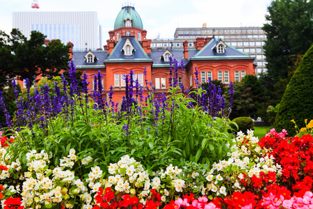sapporo: Lavender Flower with Former Hokkaido Government Office in Background.