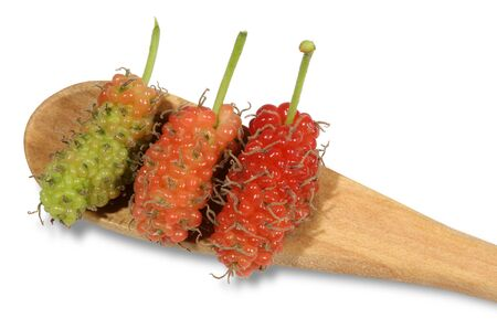 Green and pink and red mulberry placed on a wooden spoon.When fully mature there will be a dark red with sweet taste.The green baby has a sour taste but rich in vitamin C with low calories suitable for health lovers.
