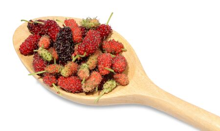 Multicolored of mulberry placed on wooden spoon.When fully mature there will be a dark red with sweet taste.The green baby has a sour taste but rich in vitamin C with low calories suitable for health lovers.