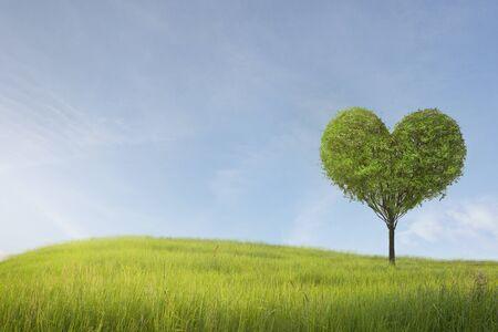 Champ vert avec arbre en forme de coeur sous ciel bleu. Beauté nature, pour un bon environnement. Banque d'images