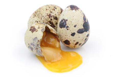 kuropatwa: Broken partridge  Zdjęcie Seryjne