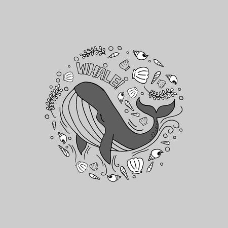whale gray Фото со стока - 52421128