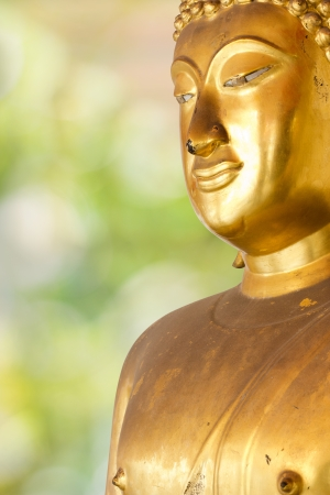 Buddha Golden Statue. Buddha Statue in Thailand Stock Photo - 17854996