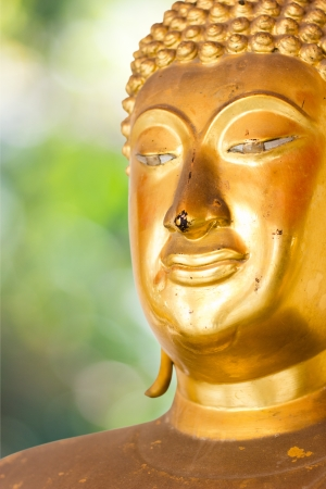 Buddha Golden Statue. Buddha Statue in Thailand Stock Photo - 17854998