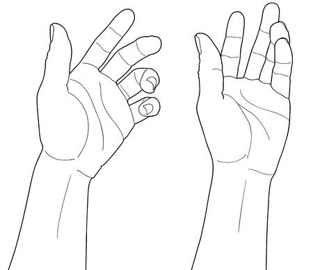 objet: homme adulte de la main pour saisir quelque chose, isol? sur blanc