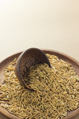 Paddy in brown wooden round oriental bowl