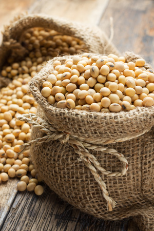 Soy beans in hessian bags Stock Photo