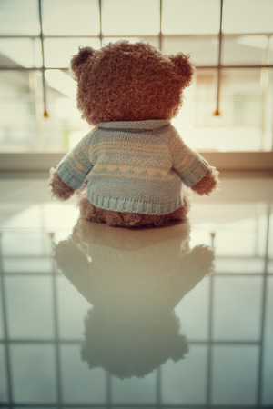 disconsolate: Lonely Teddy bear