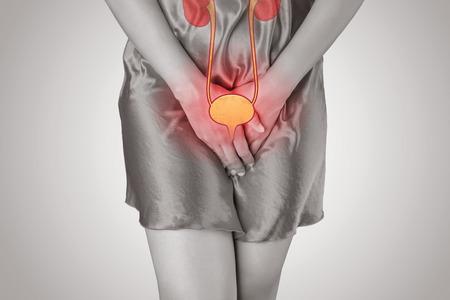 Vrouw met handen die haar kruis houdt. Vrouwelijk anatomie concept. Stockfoto