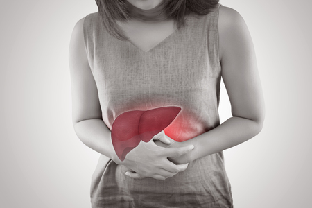 The Photo Of Liver On Womans Body Against Gray Background, Hepatitis, Concept with Healthcare And Medicine Zdjęcie Seryjne