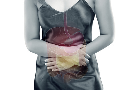 The photo of internal organs is on the women's body against gray background, Viscera on Human
