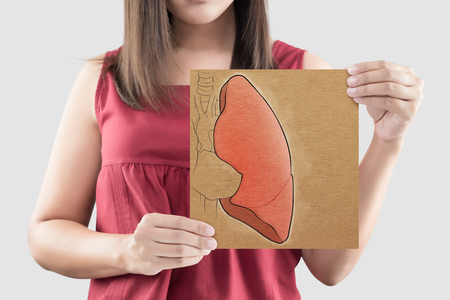 Woman hold lung picture on brown paper on the gray background, Portrait of beautiful woman in the red shirt holding paper in her hand against the gray background, Concepts of health care and internal organs