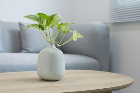 Rośliny w białym wazonie na drewnianym stole
