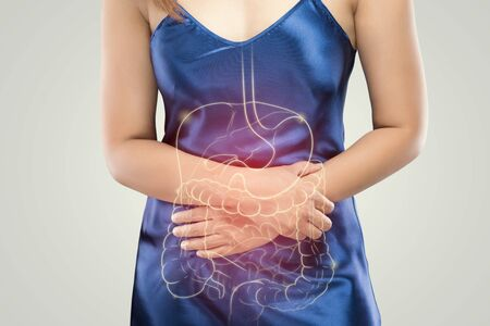 La foto del estómago y el intestino grueso está en el cuerpo de la mujer contra un fondo gris, concepto de problema de dolor de estómago de personas, anatomía femenina Foto de archivo