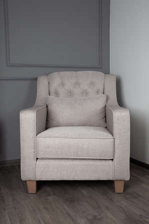 Gray sofa in the living room