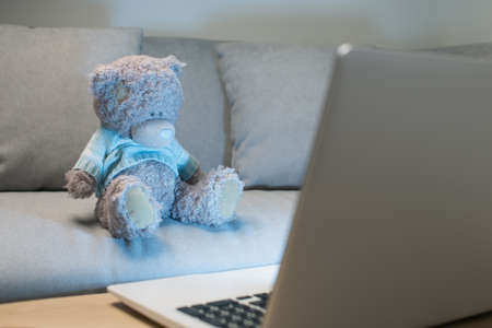 Teddy bears wearing blue sweater using the laptop in the living room at night.