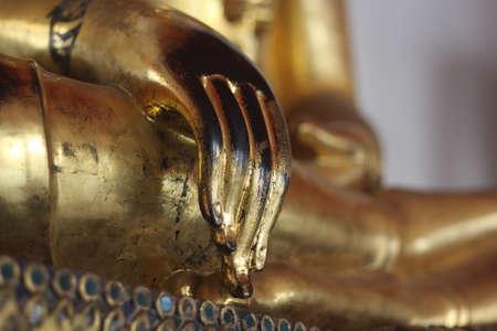 buddha hand: Buddha hand