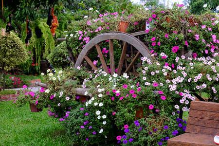beautiful flower garden full of colorful flowers keywords language english stock photo 99172419 - English Flowers Garden