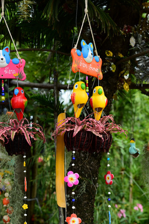 Colorful flowers in the garden.flower blooming. Beautiful flowers in the garden Blooming in the summer. Landscaped Formal Garden. Park. Beautiful Garden.t