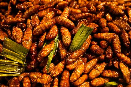 Fried worms, Thai food Stock Photo - 8084810