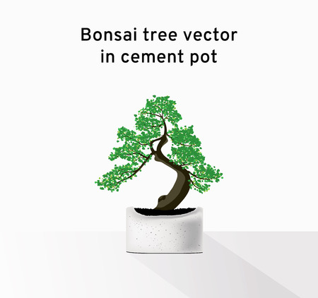 Small green bonsai tree vector on a gray cement pot on the table, beautiful tiny tree illustration  イラスト・ベクター素材