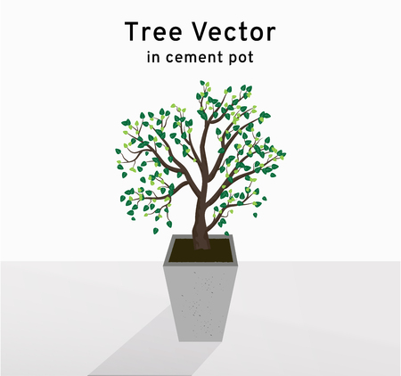 The tree spreads the leaves on the tall concrete pots on the floor, plant illustration Stock Illustratie