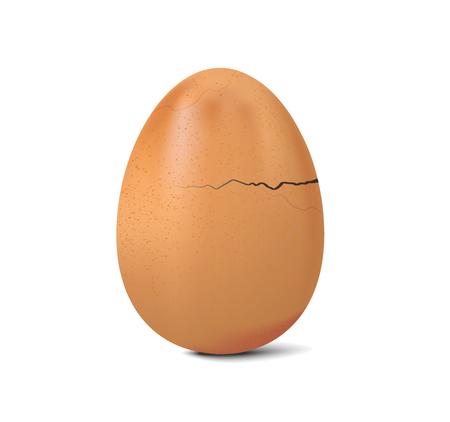 vettore fresco della crepa dell'uovo di pollo su fondo bianco, illustrazione realistica dell'uovo rotto