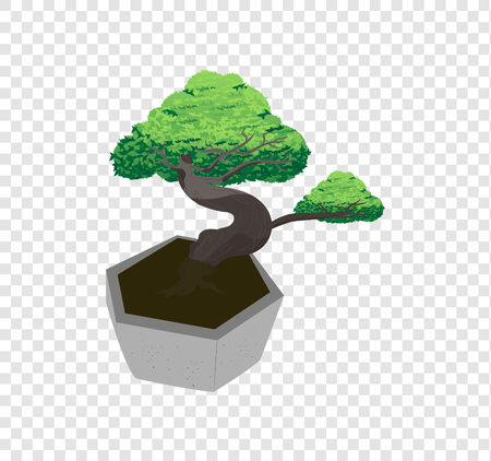 Beautiful bonsai tree vector spreads the leaves on transparency background, decorated tiny tree drawing illustration
