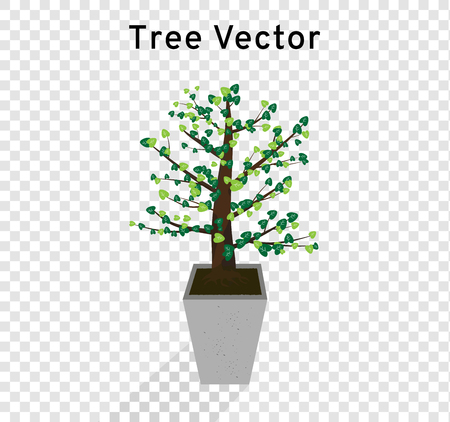 Tree vector spreads the heart shape of green leaves on the tall concrete pots, plant illustration isolated on transparency background