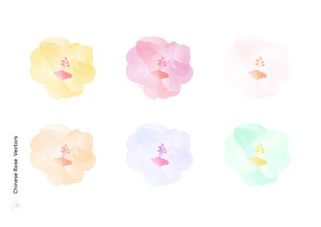 Chinese Rose or Hibiscus rosa sinensis flowers vectors with watercolor brush isolated on white background, beautiful floral element design for decoration 矢量图像
