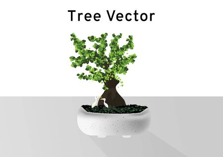 Bonsai Pinus Pine tree vectors with lady shape trunk and a little couple birds in the marble cement pot