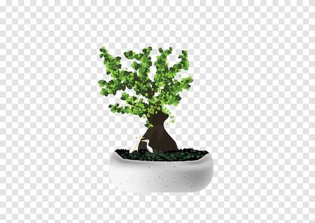 Bonsai Pinus Pine tree vectors in the marble cement pot with white tiny couple birds on transparency background Ilustrace