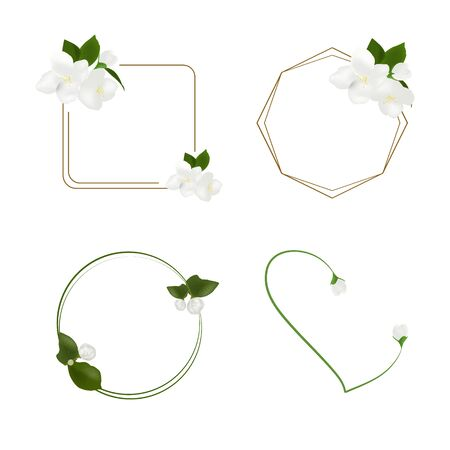 Beautiful white jasmine flower vector isolated on white background, illustration for decorating text frames, element floral design for banner or wedding invitation card, mother day flower