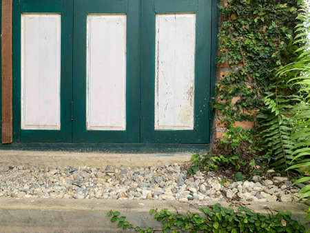 The old style wooden door leaf 免版税图像