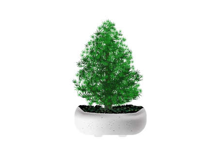 Merry christmas pine tree in mable pot vector on white background 矢量图像