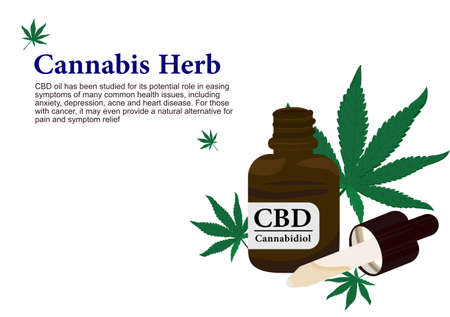 Cannabis herb for pure CBD oil extraction in medical treatment vector ep01