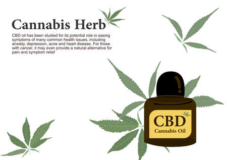 Cannabis herb for pure CBD oil extraction in medical treatment vector  イラスト・ベクター素材