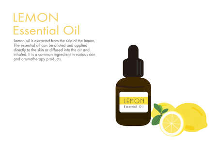 lemon herb for essential oil extraction in medical treatment vector