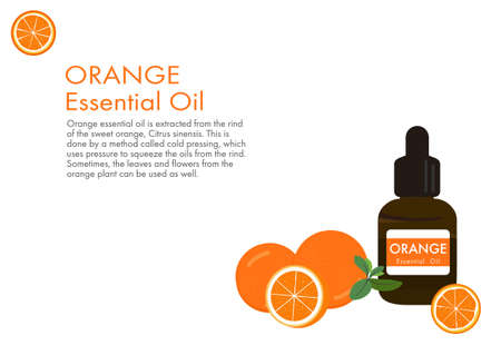 orange essential oil, herb vector isolated on white background ep01