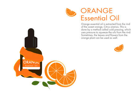 orange essential oil with peel, herb vector isolated on white background ep02  イラスト・ベクター素材
