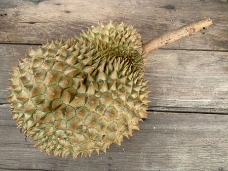 a durian fruit on the wooden floor