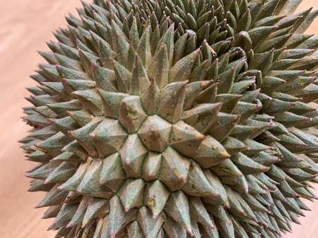 The focus image of durian thai fruit 写真素材